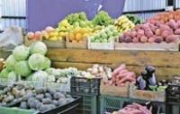 поставки сельхозпродукции из Украины в ЕС